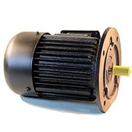 Flanšiniai asinchroniniai trifaziai elektros varikliai 1390aps./min (4-polių)
