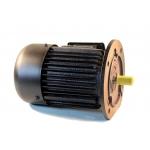 Flanšinis trifazis asinchroninis elektros variklis 0.55kW (Y-801-4F)