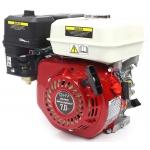 Benzininis variklis 6.5HP (M79893)